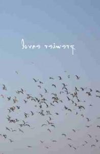 """Sur un ciel d'azur, envol de mouettes, surmonté du titre : """"lovne reimerp"""""""